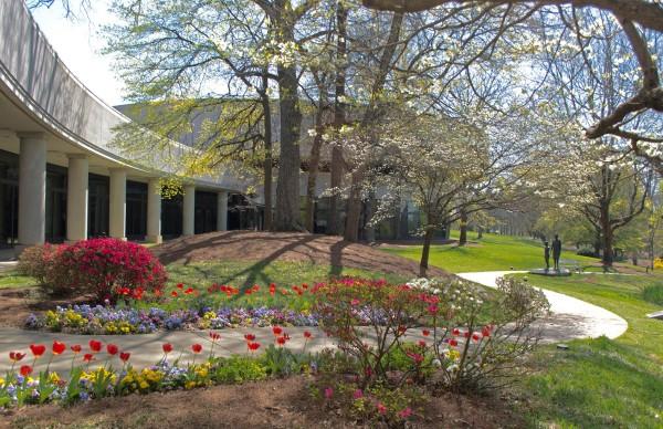 Carter Center gardens